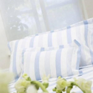blue stripe bedding